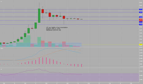 LTCUSD: LTC very healthy 4 hour consolidation