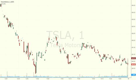 TSLA: Test of publish idea