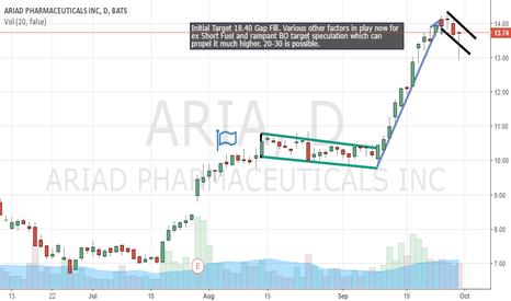 ARIA: Bull Flag forming?