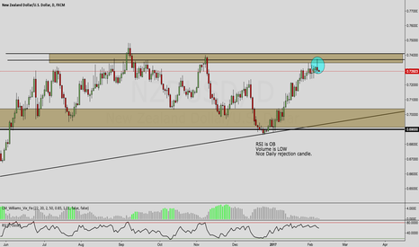 NZDUSD: NZD/USD OUTLOOK