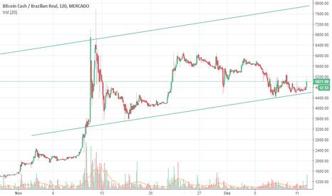 BCHBRL: Bitcoin Cash dando sinal de disparada