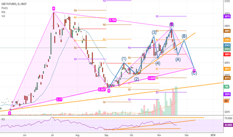 ZOH2018: Oats Possible H&S