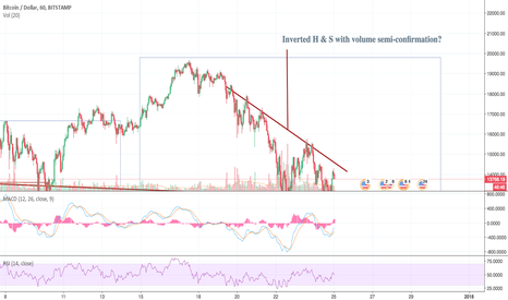 BTCUSD: BTC oh BTC, which h&s do you see?