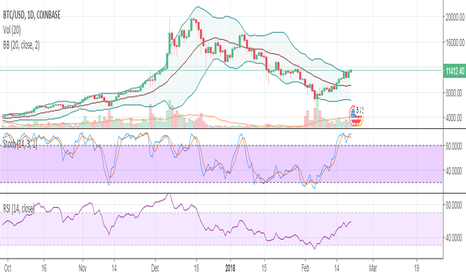BTCUSD: BTC Technical Analysis - 02/20 (Look before you Leap now)
