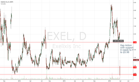 EXEL: Gap action with long term support.