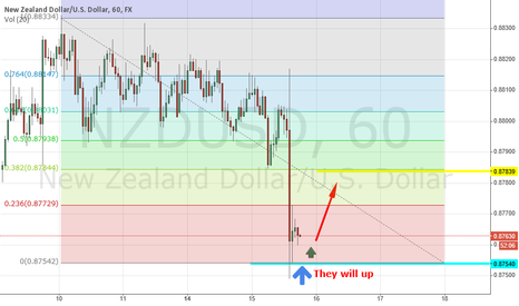NZDUSD: NZDUSD will up today