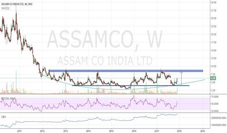 ASSAMCO: Assam Company - Round Bottom