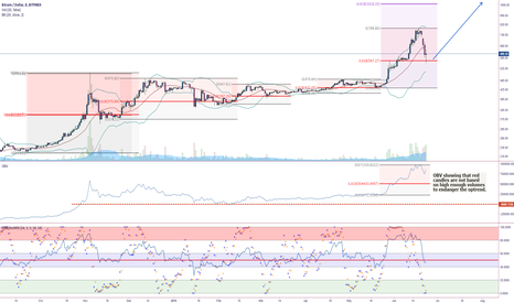 """BTCUSD: BTCUSD Daily Chart for """"Project Trade Like a PRO"""""""