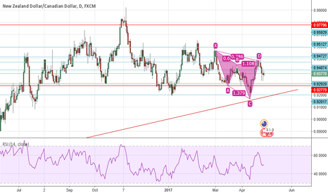 NZDCAD: Perfect cypher, lost opportunity