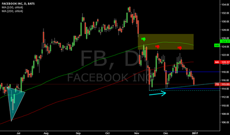 FB: FB @ daily @ after 118 didn`t hold, will 113,55 holds ?