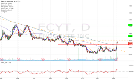 ECYT: ECYT - Flag formation Momentum Long from $3.03 to $4.13