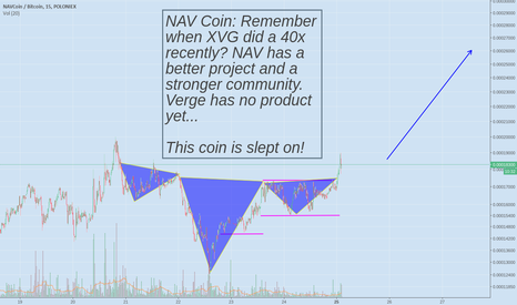 NAVBTC: NAV COIN VS VERGE, WHO IS THE MOST PROMISING PRIVACY COIN?