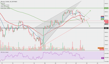 BTCUSD: Long Or Short?? Get Some Sleep, Cash Is King has us covered!