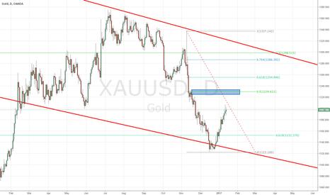 XAUUSD: gold positional trade setup
