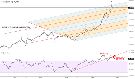 FC1!: Feeder Cattle - Long term top in place