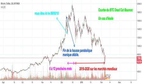 BTCUSD: Situation des marchés mondiaux long terme