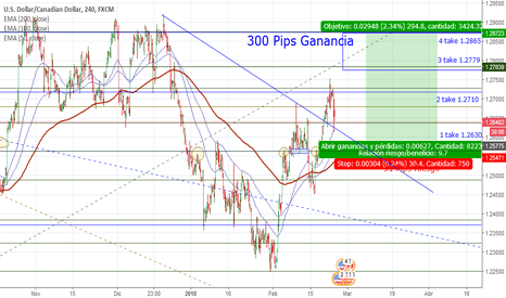 USDCAD: 300 pips ganancia/31 pips Riesgo Buy Limit