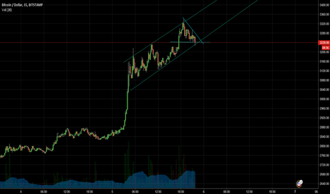 BTCUSD: BTCUSD upwards trend line and bull flag