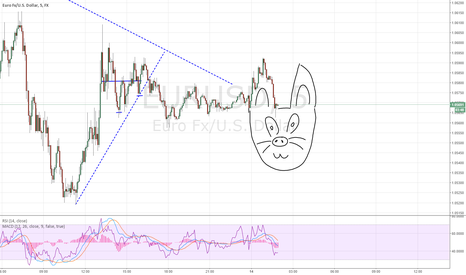 EURUSD: Meow