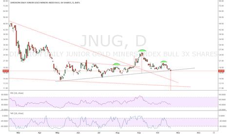 JNUG: JNUG: Turning Bearish. Head and Shoulder Pattern