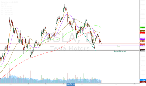 TSLA: TSLA May have more room to fall-