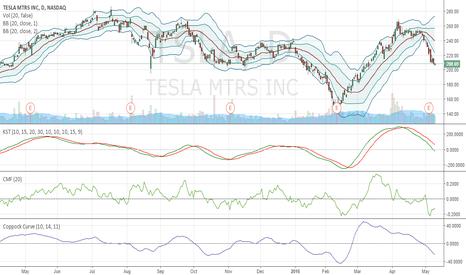 TSLA: Short Tesla $TSLA