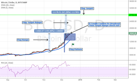 BTCUSD: Bitcoin / Dollar Daily Chart  Flag Pattern!