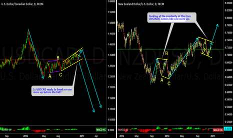 USDCAD: USDCAD, NZDUSD: Are these two pairs giving a clue ?