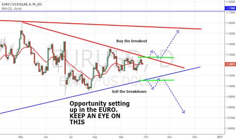 EURUSD: EURO Setting up