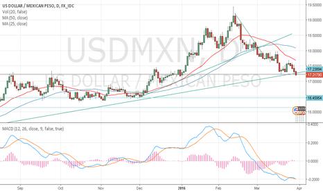 USDMXN: USD/MXN @ support level
