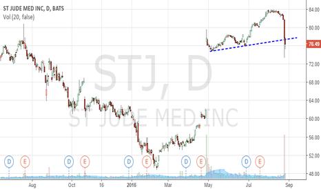 STJ: Following Muddy Waters Short