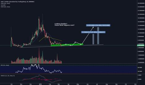 SALTUSD: SALT/USD New Market cycle 200%