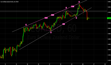 EURNZD: Who else was in this Trade ?
