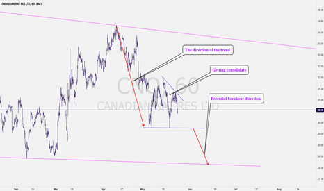 CNQ: CNQ: The underperformer is gaining some investors attention