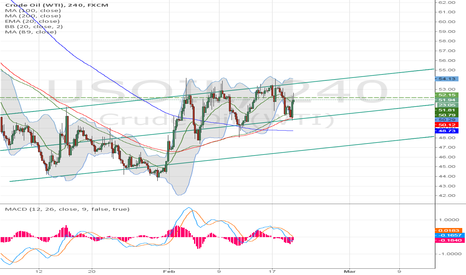USOIL: oil possible flag formation