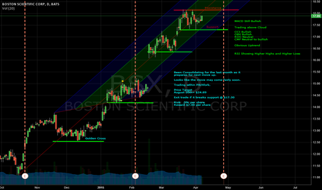 BSX: $BSX Price Target of $24.89 by Mid August