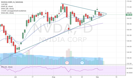 NVDA: NVDA Option play