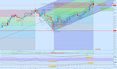BTCUSD: Going short on Bitcoin because everyone just buying for BTG BFX