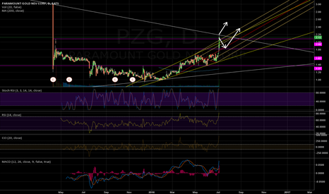 PZG: PZG: Another Rally?