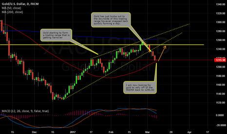 XAUUSD: GOLD TO RALLY?