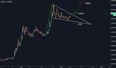 BNBBTC: BNB to the moon! (possible +50% profit)