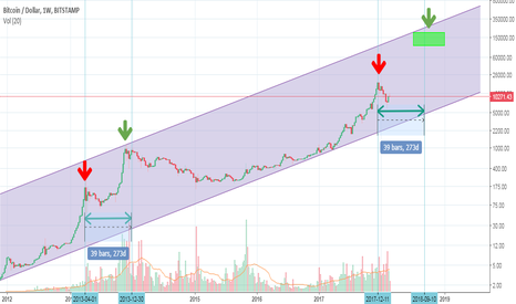 BTCUSD: BTC 100,000$ ? Forecast 2019 Log. Price Scale NewCoinOrder