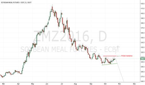 ZMZ2016: CBoT soyameal still a short but no margin at the upside
