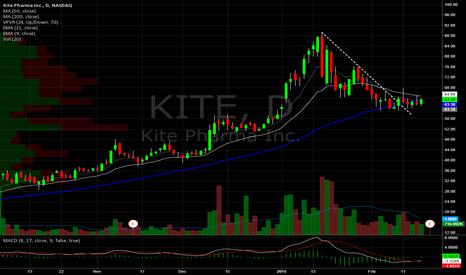 KITE: Kite Pharma Daily. Base building