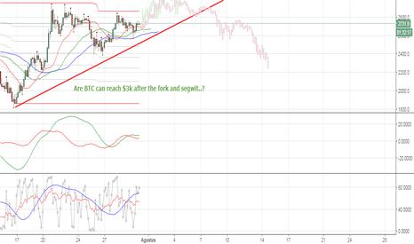 BTCUSD: BTC-USD Bitfinex - Are BTC will survive after Segwit Drama ?