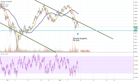 XBTUSD: support at 8300 or will we go lower?  Only time will tell