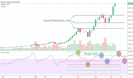 BTCUSD: Is The Sky Falling...Yet?