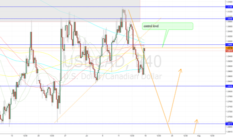 USDCAD: USDCAD Volume stat. and open interest levels, in text
