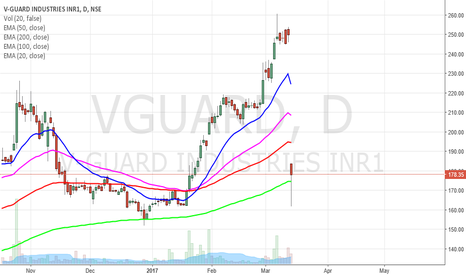 VGUARD: V-Guard will stabilise after a fall of profit booking