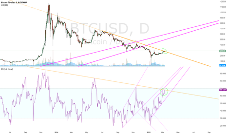 BTCUSD: Long-Term Decision Point